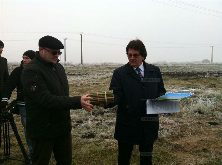 Primaria Timisoara anunta ca a plantat 110.000 de salcii energetice