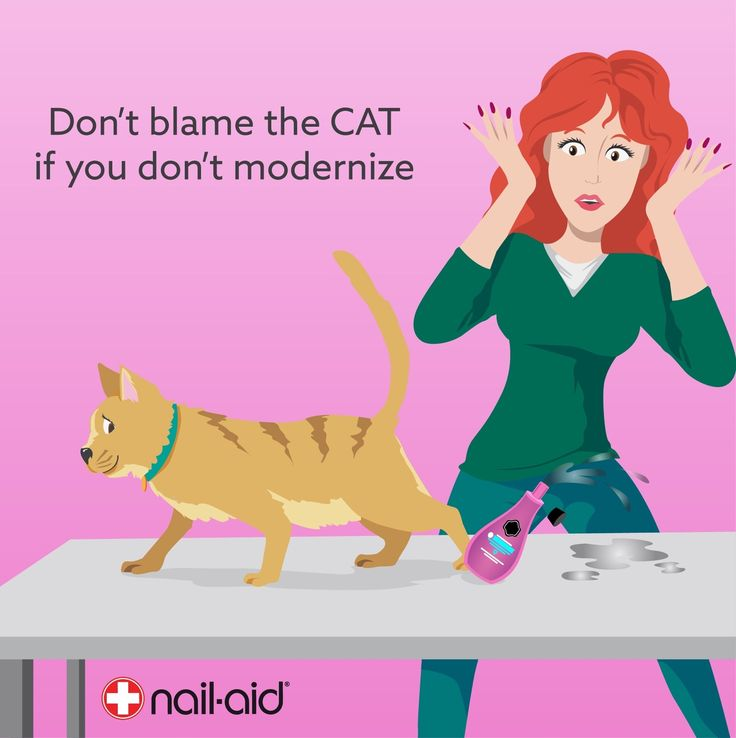 """Don't blame the CAT if you don't modernize!!! Use the newest, easiest and fastest way: """"1 SECOND SPRAY AWAY""""  Spray Away is now available in all US Walmart stores and online at  nailaidworks.com   #nailaid #sprayaway #nailpolishremover #nailpolish #spray #nomess #new #nailcare #nailaidworks #innovative #acetone #girly #nails #hands #cute #manicure #nail #nailart #nailcare #nailstagram"""
