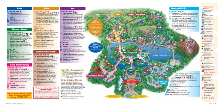 Animal Kingdom Map DISNEY ideas Animal kingdom map, Disney world