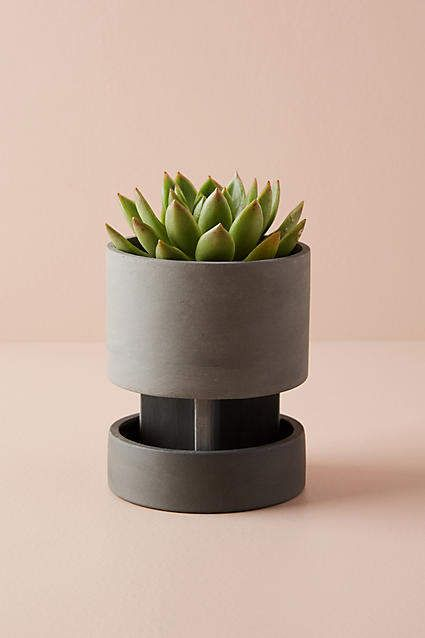Anthropologie Agnes Elevated Planter Home Goods Pinterest