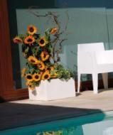 Cassetta Modulo by plart design, http://bit.ly/2afbldu  Vase To Rectangular Box Ideal for outdoor spaces.