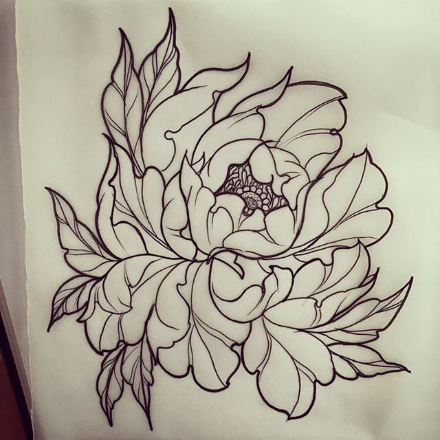 Traditional Flower Line Drawing : Best neotraditional tattoo images on pinterest