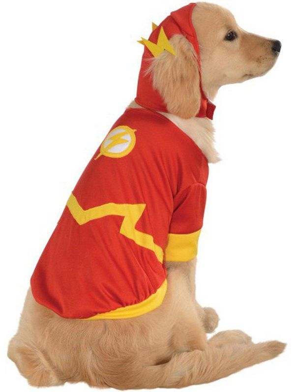 Flash Costume For Pets With Images Superhero Dog Costumes Pet