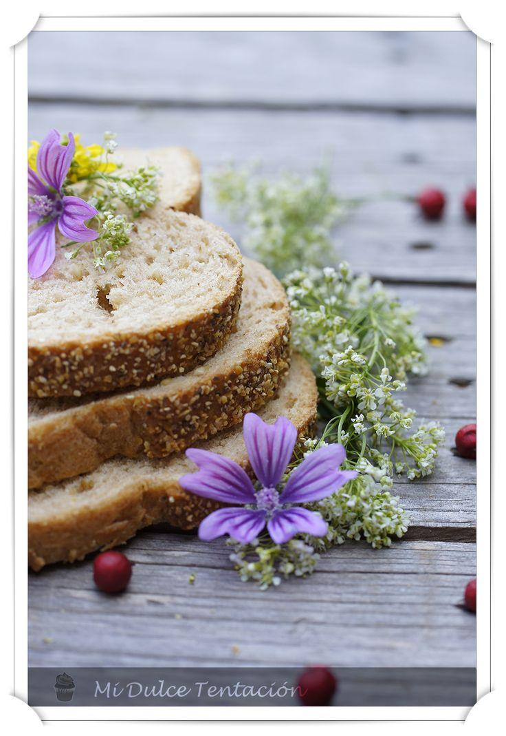 Mi dulce tentación: Pudin de Pan de Avena y Maiz