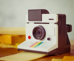 Say Cheese! Polaroid Instant Camera Cheese Cutter ...