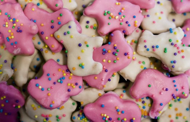 Homemade Circus Animal Cookies!