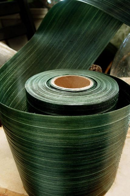 """Variegated Aspidistra Ti Leaf Floral Ribbon $13 Aspidistra Ribbon Dark Green is waterproof so it is great to use inside clear vase to hide flower stems instead of using ti leaves or real aspidistra leaves. It has a natural looking textured green leaf look. A deep green variegated Aspidistra Ti Leaf 4"""" wide ribbon that is on a 50 yard spool. Get a fresh natural look for your floral creations with this waterproof ribbon. Our Aspidistra ribbon resembles nature itself."""