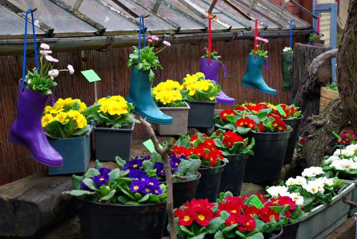 Wrocławski Ogród Botaniczny - wiosenne dekoracje