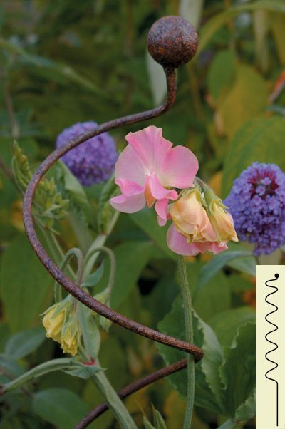 Great for long stemmed and vine flowers.