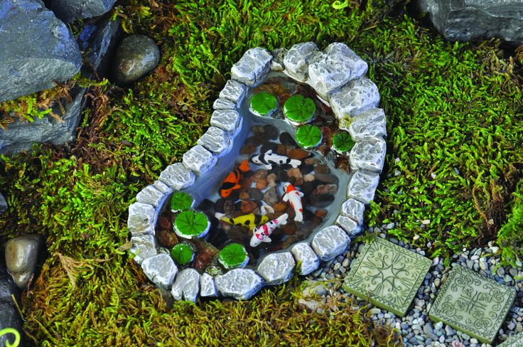 1000 ideas about fish ponds on pinterest ponds diy for Koi pond maintenance near me
