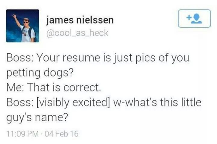 who keeps a resume on file silly willy pinterest