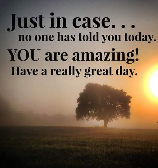 """Just in case... no one has told you today. YOU are amazing! Have a really great day."""