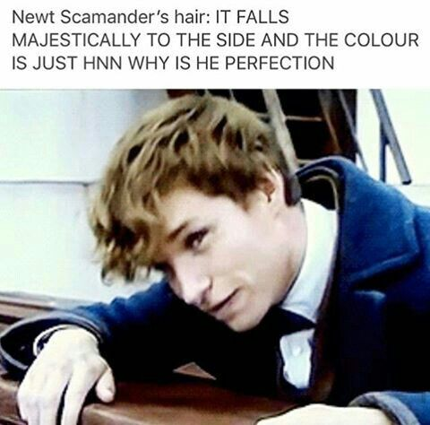 I really love the way Newt's character was written