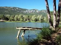 Andon (Lac de Thorenc)