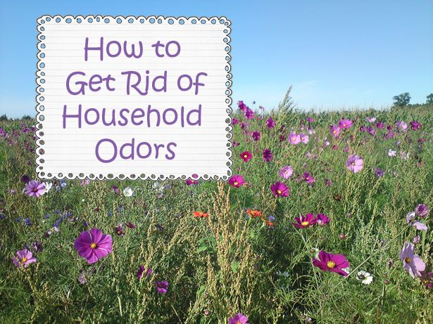 Helpful Household Tips: Getting Rid of Household Odors for the Holidays