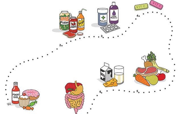 Mindful Eating Adhd And Nutrition >> 17 Best images about Infographics on Pinterest ...