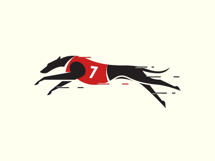 Greyhound  by Sandro Laliashvili #Design Popular #Dribbble #shots