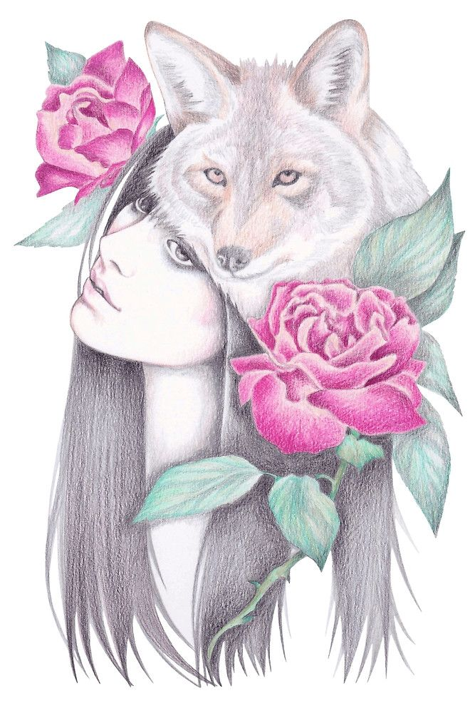 Fotodruck   pinke Rosen   Wolf   Tiere   romantisch   verträumt   Zeichnung   Deko