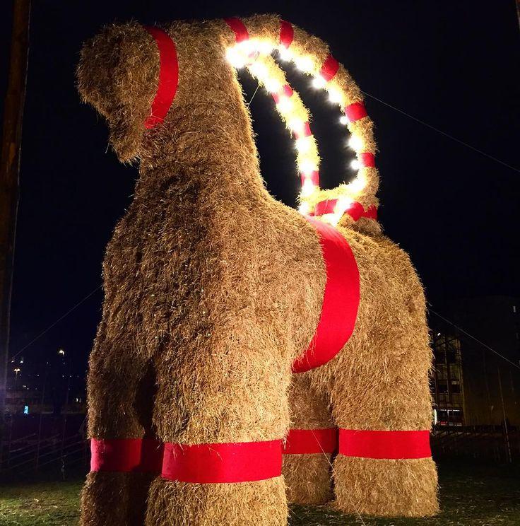 Ett tydligt tecken att det börjar lacka mot jul är väl Gävlebockens återkomst!?  #gävle @gavlebocken #gävlebocken #visitgavle #jul #joulu #christmas #sweden