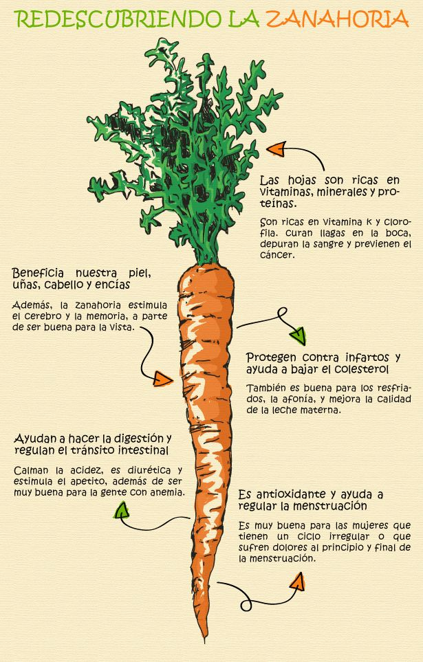 #Beneficios de la #zanahoria que no conocías en una sola #infografía