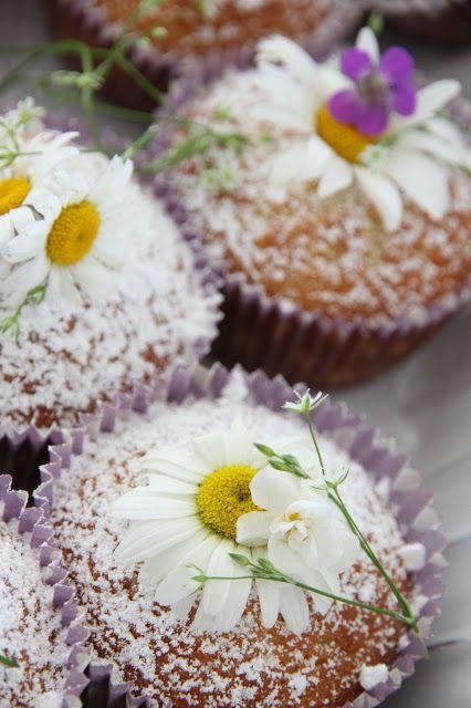 Daisy Cupcakes...