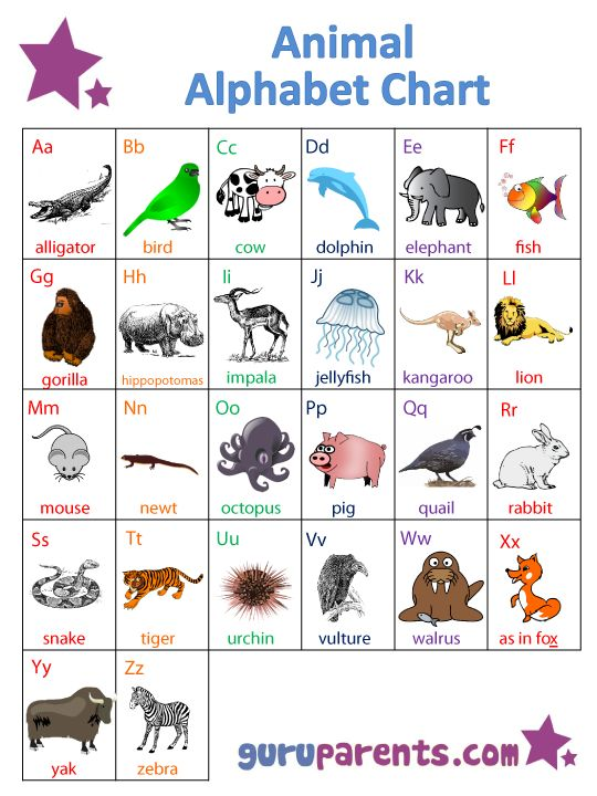 Best English Images On   English Grammar Abc Chart