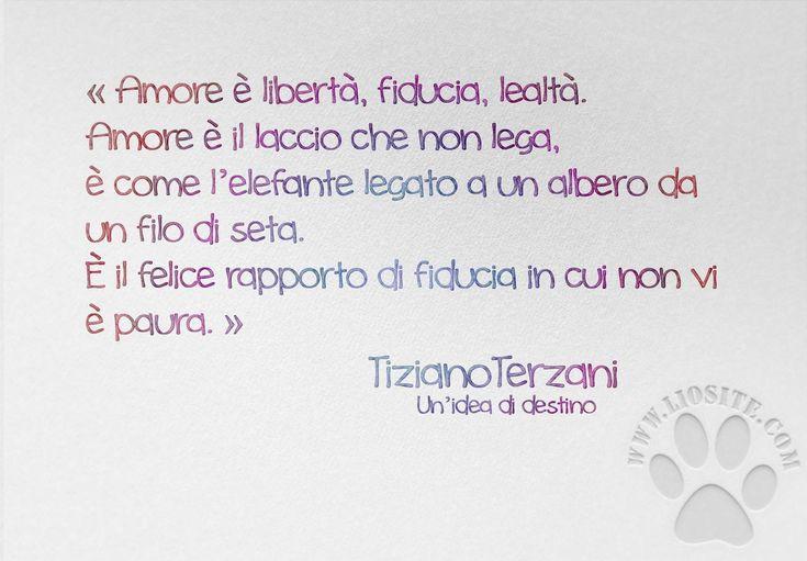 Che io ami Terzani lo sanno tutti, non mi stanca mai leggere e rileggere ogni suo libro. E credo dia sempre uno spunto positivo al mio pensiero :) « Amore è libertà, fiducia, lealtà. Amore è il laccio che non lega, è come l'elefante legato a un albero da un filo di seta. È il felice rapporto di fiducia in cui non vi è paura. » Tiziano Terzani - Un'idea di destino #tizianoterzani, #amore, #fiducia, #senzapaura, #destino, #italiano,