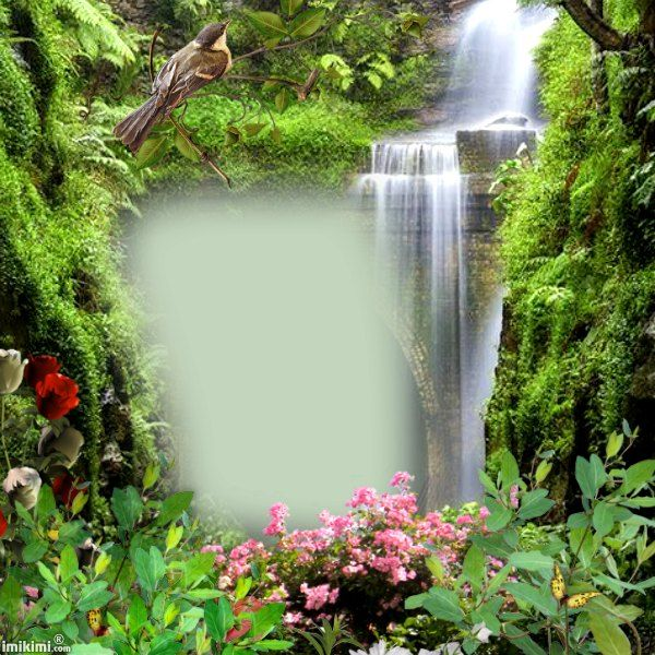 Waterfall - nature frame