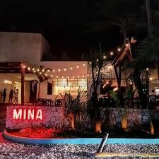 Image result for mina tulum