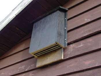 Bat House Bat Box Plansbuild