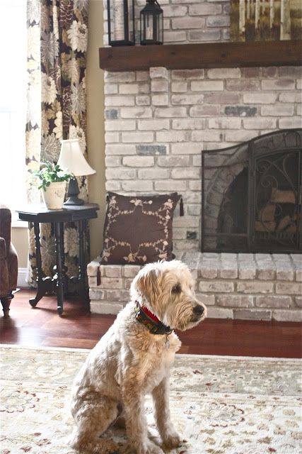 The Yellow Cape Cod: White Washed Brick Fireplace~Tutorial.    I love the result and of course, the pooch! I'll definitely try this.
