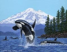 Orcas Killer whales San Juan Island Washington Mt Baker painting..... i want this in a traditional dot style oval w/ a bit less focus on the orcas.