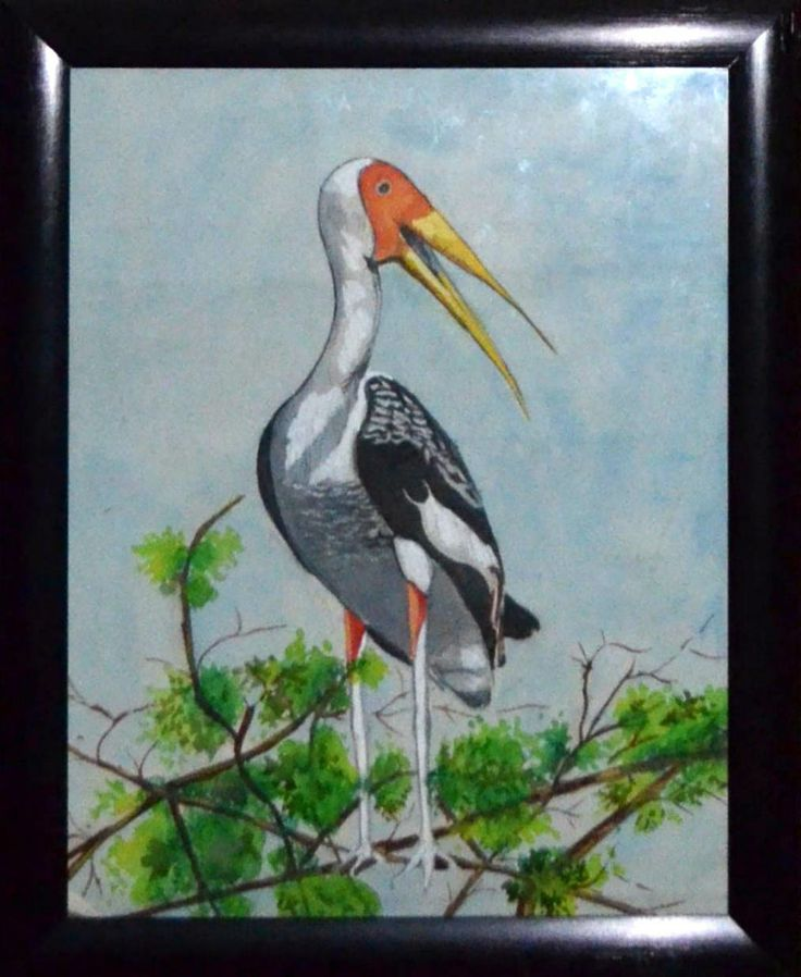 "This is a painting of a stork I did a few years ago. I used several photos for reference while I was painting this on cartridge paper. The colours and use of watercolours give it a nice, soft, balanced feel  Size: 16""x13"" Medium: Water colour"