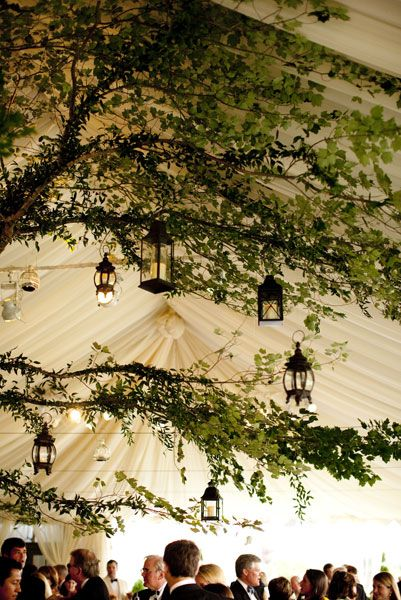 Virginia, tree, summer wedding, easton events, lantern, lynne brubaker, keswick, keswick country club, Summer