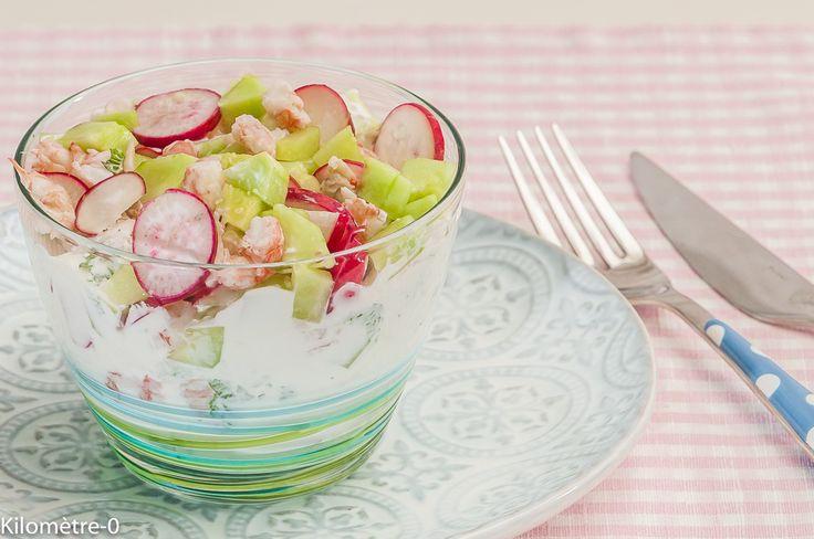 Tzatziki aux langoustines, radis et concombre | Kilometre-0.fr