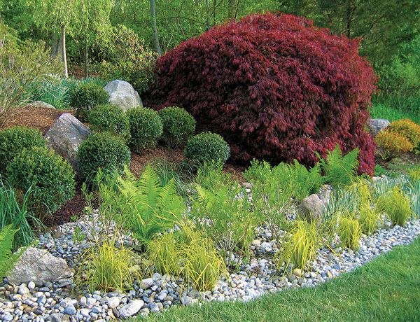 Best 59 Rain Gardens ideas on Pinterest | Rain garden, Backyard ...