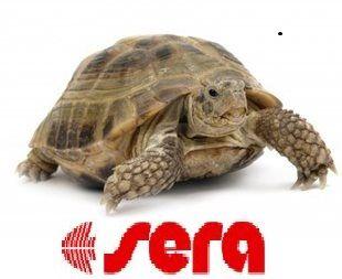 schildpad met_sera_logo