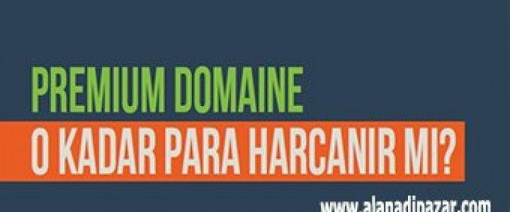 Hep sorarlar Premium Domaine O kadar Para Verilirmi? diye işte cevabı bu makalede.