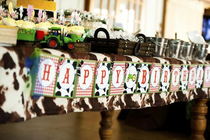 Farm party ideas planning supplies idea cake decorations for Animal party decoration ideas