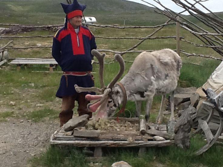 Op weg naar de Noordkaap 2013