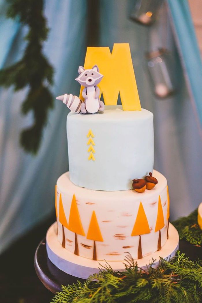 Cake from a Starry Nights & Campfires Themed Woodland Camping Birthday Party via Kara's Party Ideas KarasPartyIdeas.com (43)
