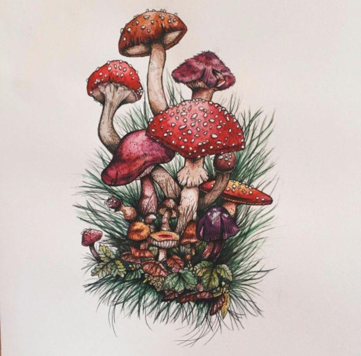Best 25 Mushroom Tattoos Ideas On Pinterest Mushroom