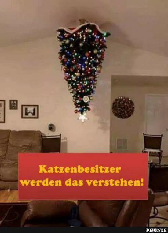 shop Microsoft Access 2000. Шаг