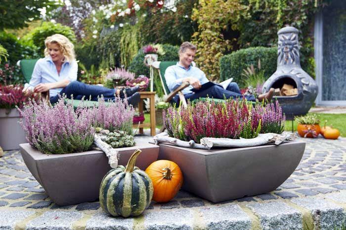 63 best Ideen für den Garten images on Pinterest Gardening