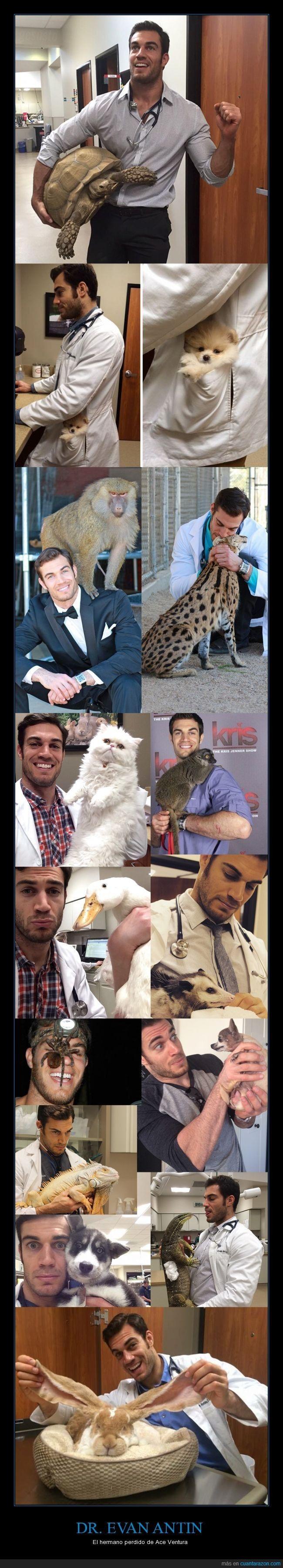 El Dr. Evan Antin es el mejor amigo de los animales - El hermano perdido de Ace Ventura   Gracias a http://www.cuantarazon.com/   Si quieres leer la noticia completa visita: http://www.estoy-aburrido.com/el-dr-evan-antin-es-el-mejor-amigo-de-los-animales-el-hermano-perdido-de-ace-ventura/