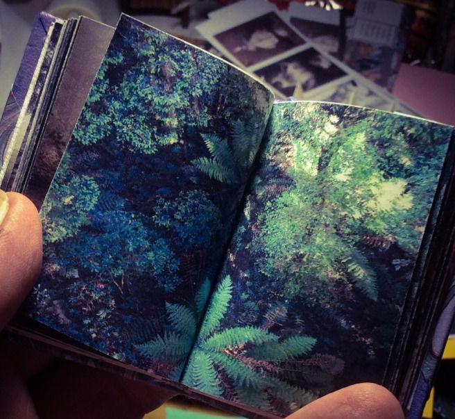 willo press | Small books, serious & cynical, handmade by Joy Serwylo