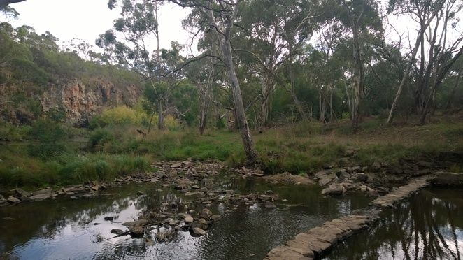 In search of a little known swimming hole and weir on the Onkaparinga River. Adelaide Hills, South