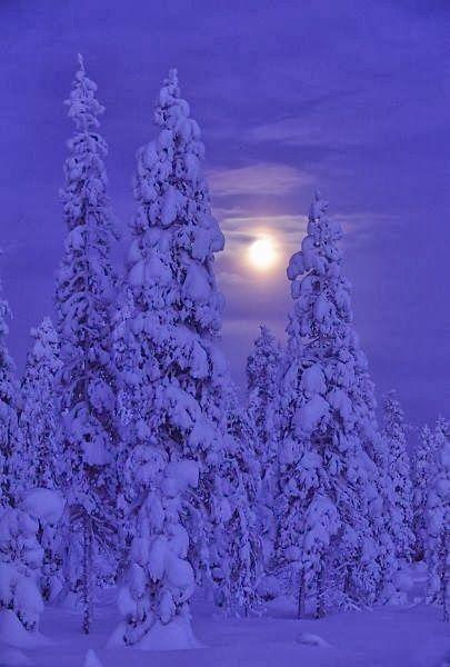Darkness and Moon Kuusamo, Finland