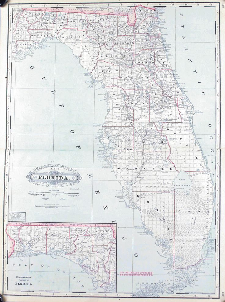 Florida Railroad and County Antique Map 1887