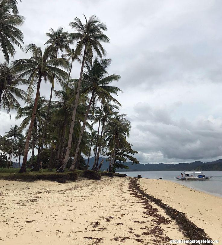 Пляж с пальмами на Филиппинах